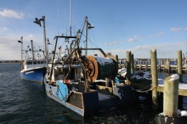 Support your local fishermen